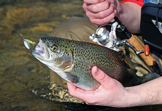 10 great spring trout lures - game & fish, Fly Fishing Bait
