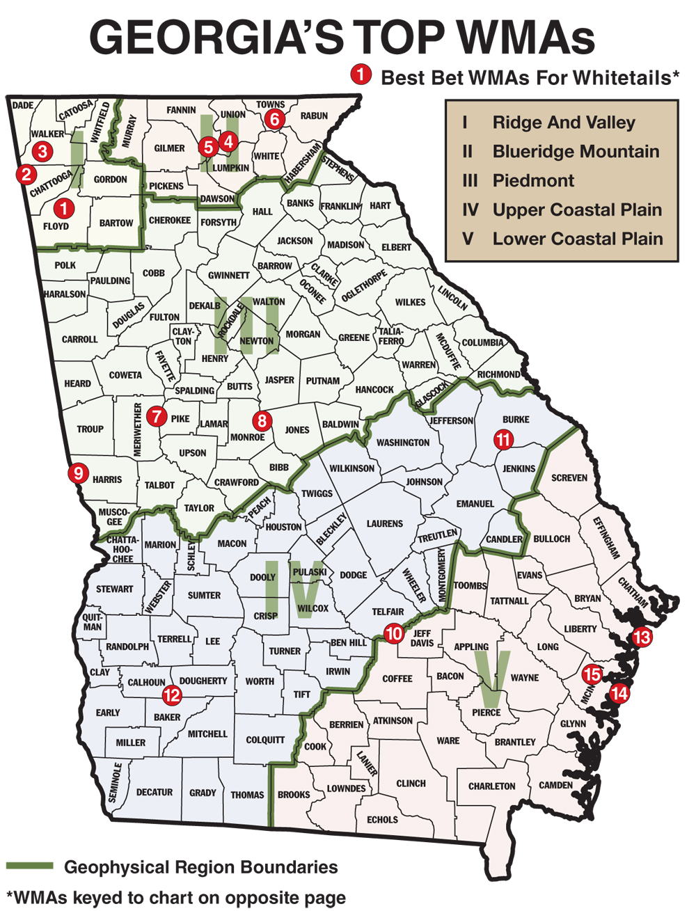 Georgia has a generous amount of whitetail deer for hunters to pursue. With a statewide