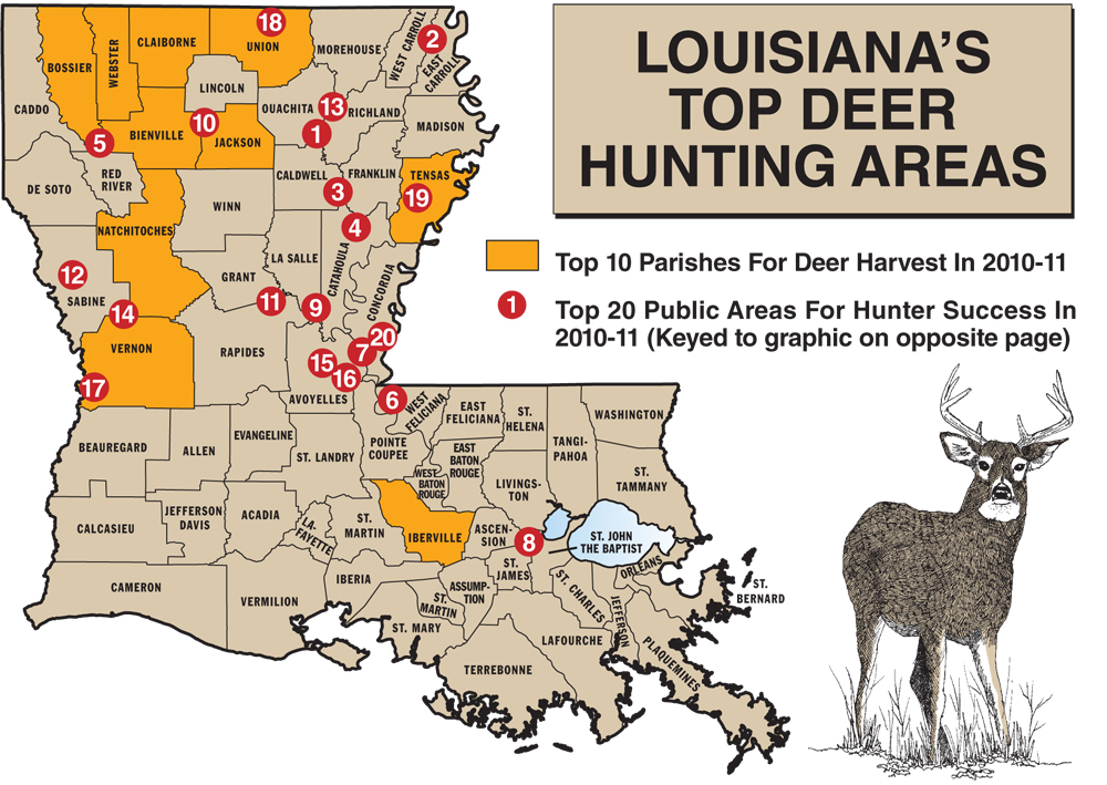 louisiana public hunting land map 2011 Louisiana Deer Forecast Best Bets In The Bayou State louisiana public hunting land map