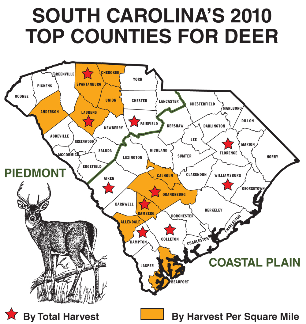 Deer hunters across the state of South Carolina enjoyed a good, but not great, deer hunting