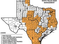 Please click the image to enlarge this map for Best Bets for Texas whitetails this season