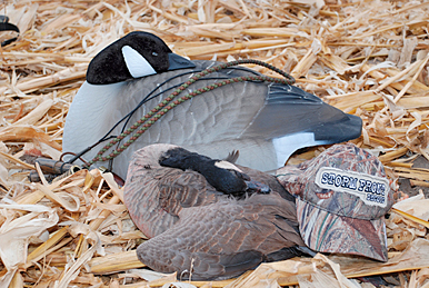 Using Sleeper Goose Decoys