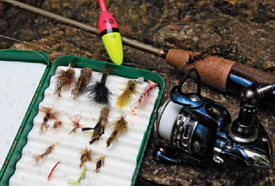 spin-fishing with flies - game & fish, Fly Fishing Bait