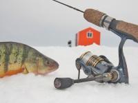 GFicefishing_122111hL