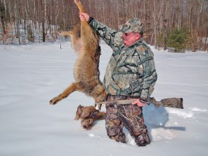 coyote hunting, hunting coyotes, predator hunting
