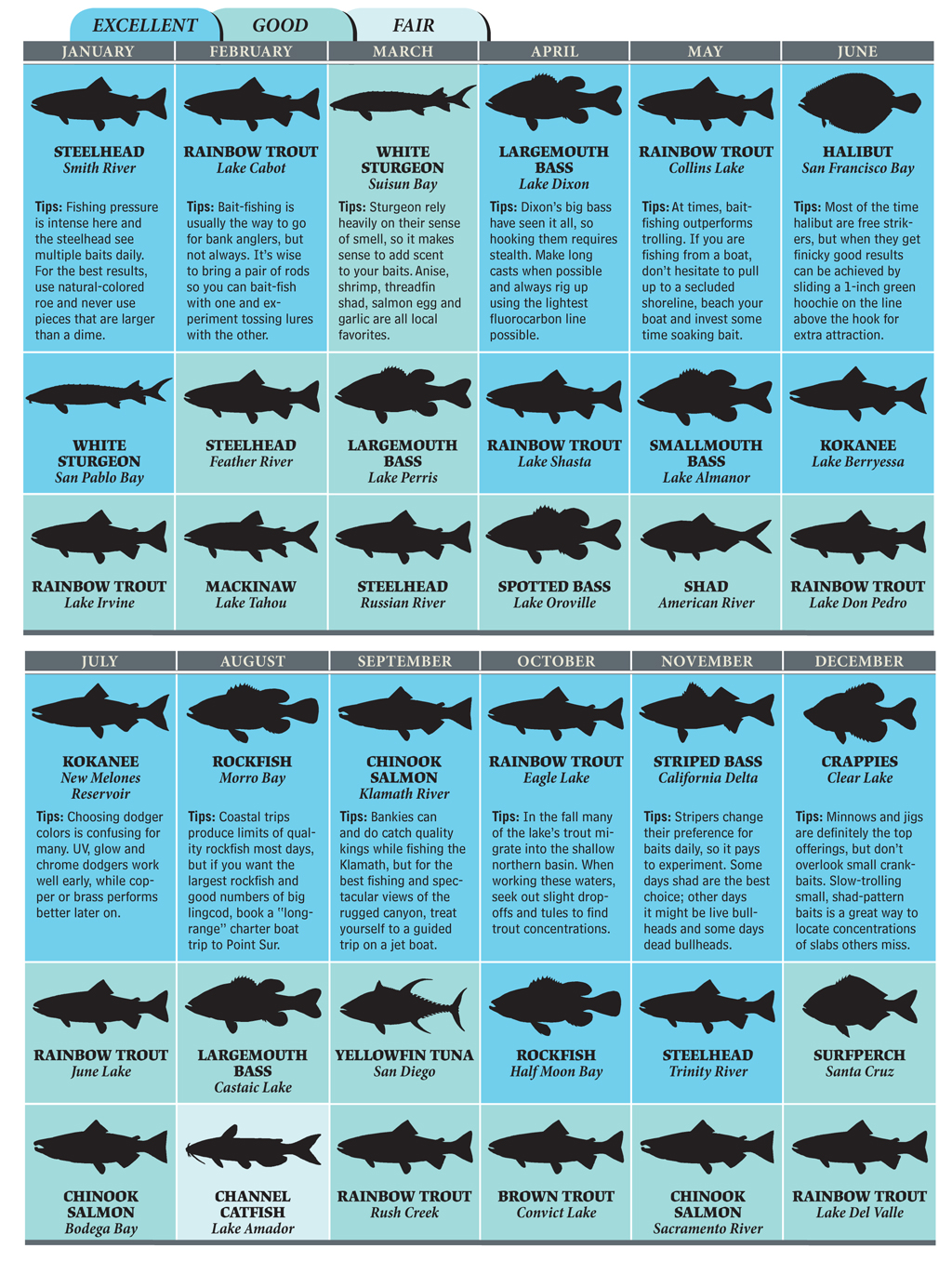Cal fish and game halibut size autos post for California fishing game