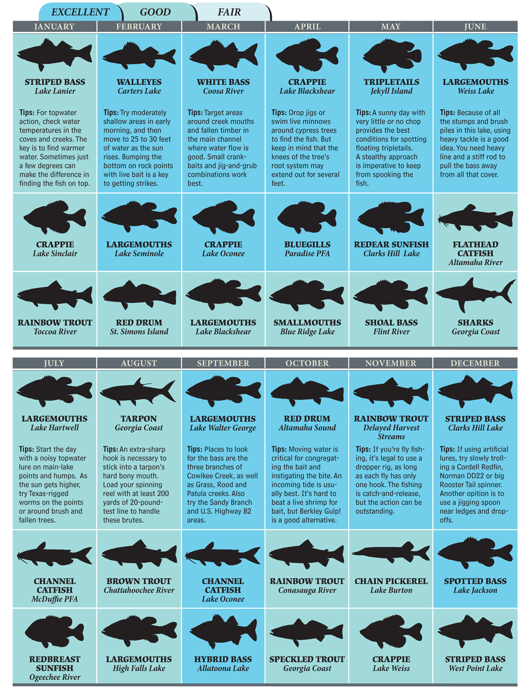 Top spots for georgia fishing in 2012 game fish for South carolina saltwater fish species