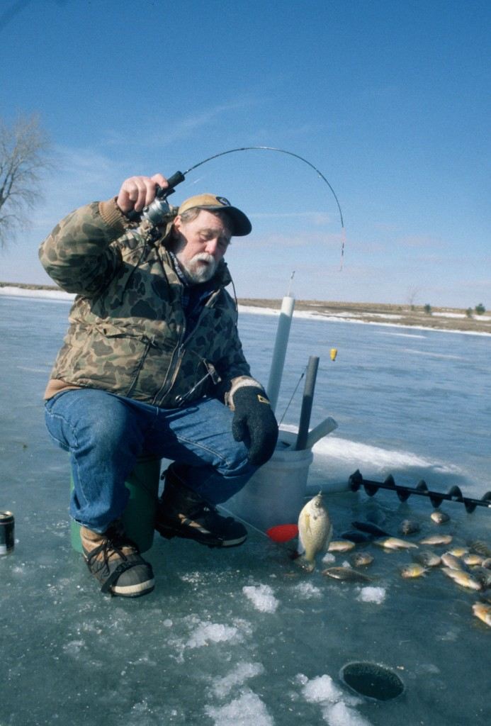 Top illinois fishing spots for 2012 game fish for Best saltwater fishing spots in nj