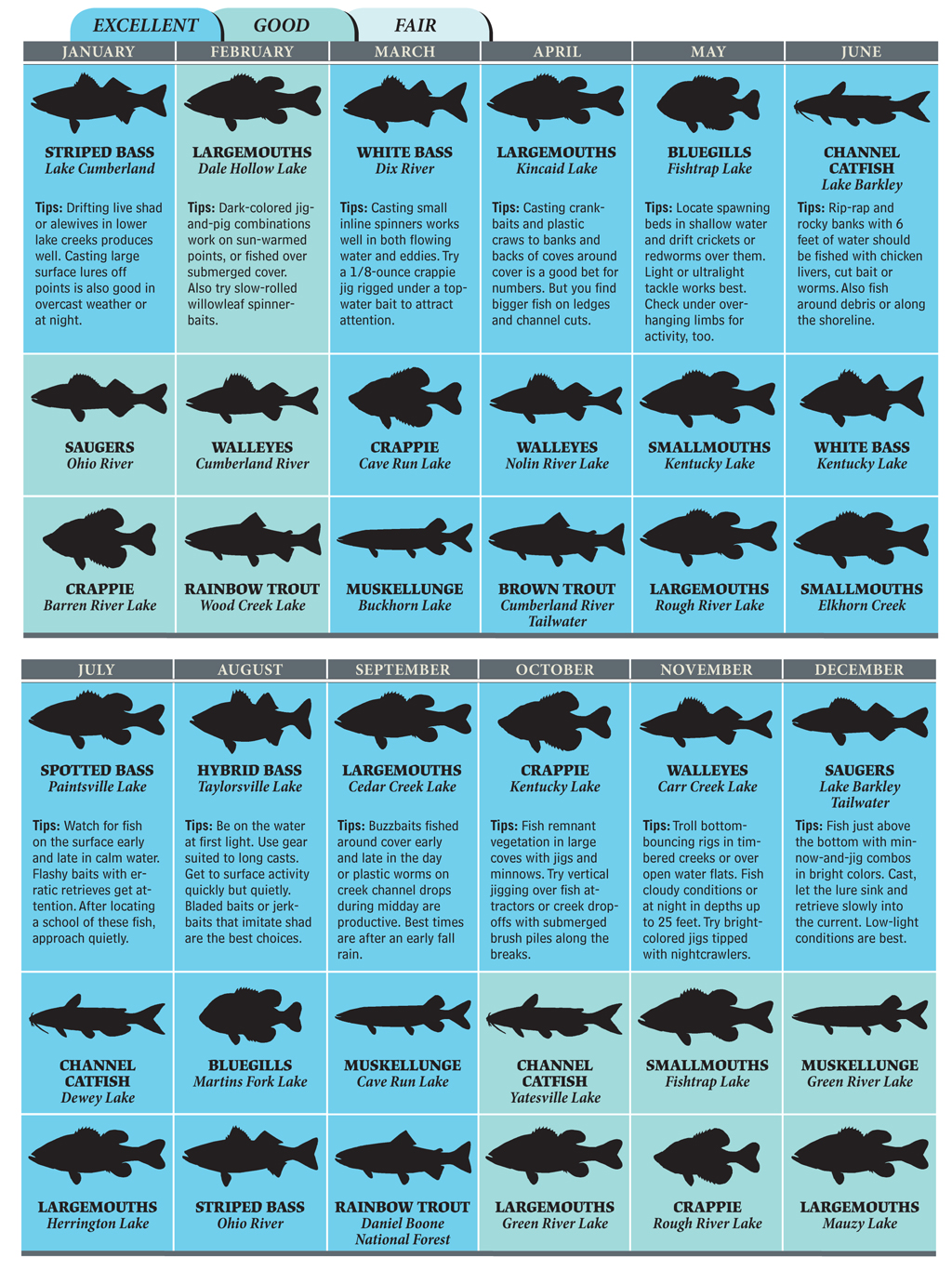 Hot spots for kentucky fishing in 2012 game fish for Kentucky fish and game