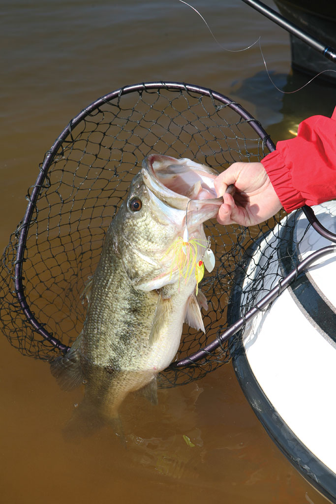2012 Oklahoma Bass Forecast