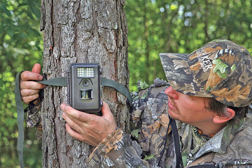 Plan Now! Off-Season Tactics For Deer Hunting