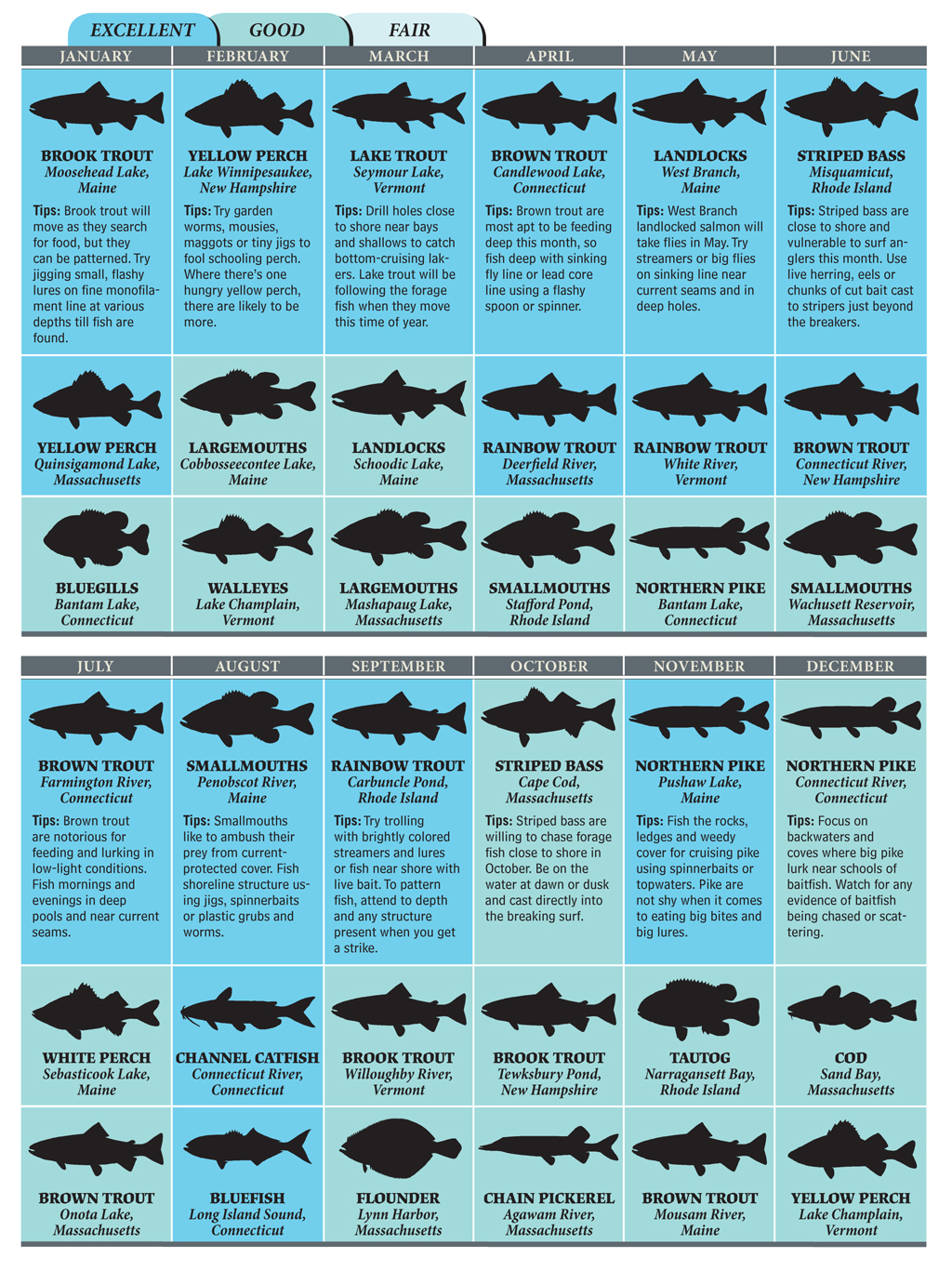 Best bets for new england fishing in 2012 for Texas freshwater fish limits