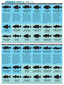 Best bets for oklahoma fishing in 2012 game fish for Oklahoma fish and game
