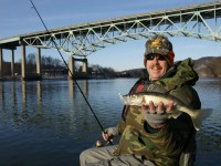 Art Hamley caught this lower Allegheny River walleye in the Kittanning area. The Route 422 Bridge is in the background.  Photo by Jeff Knapp.