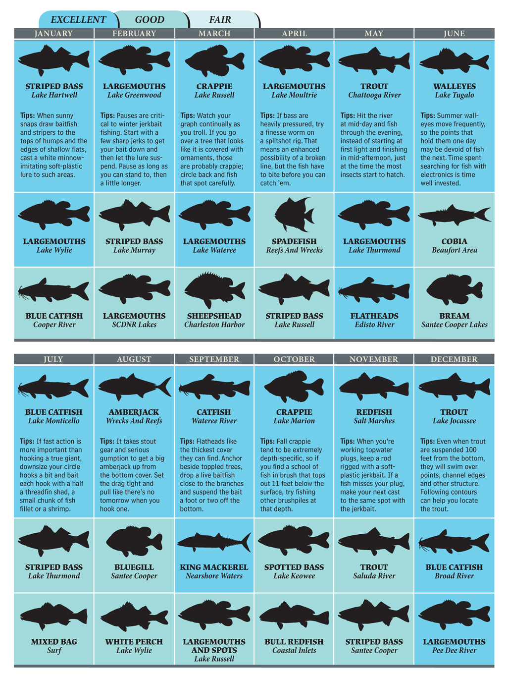 best bets for south carolina fishing in 2012 game fish