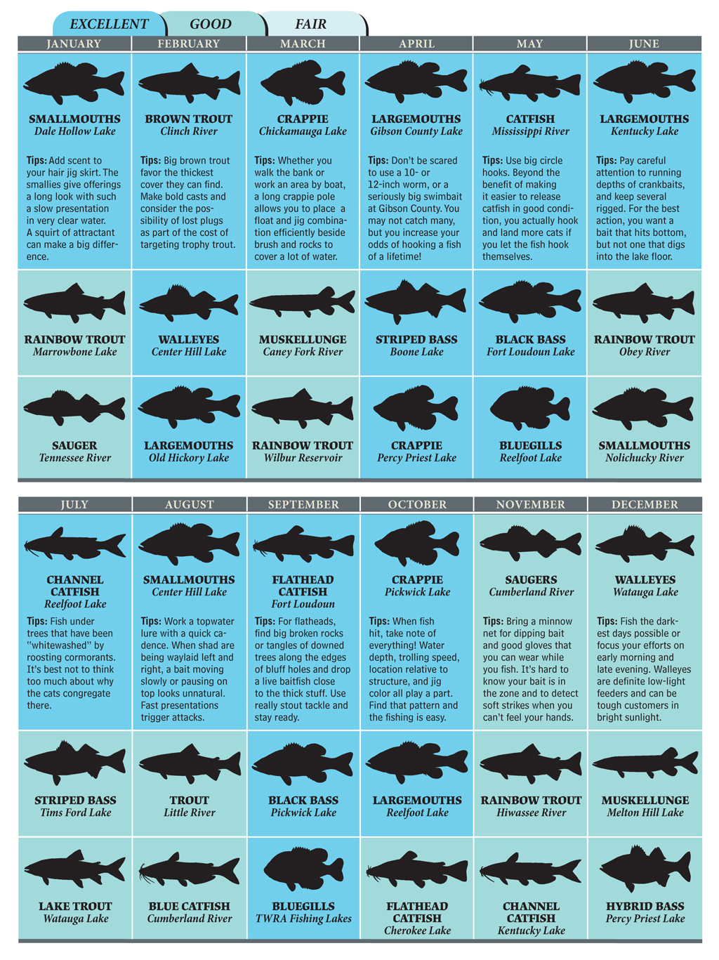 We've picked three of the best bites in Tennessee for every month of the year. Here's a look at our 2012 Tennessee Fishing Calendar.