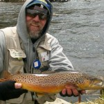 Catfish_Bill_19_inch_brown1