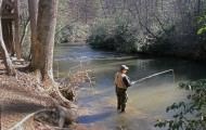 The trout streams of the North Georgia mountains offer the chance to catch both stocked and wild rainbow and brown trout in June. Photo by Polly Dean.