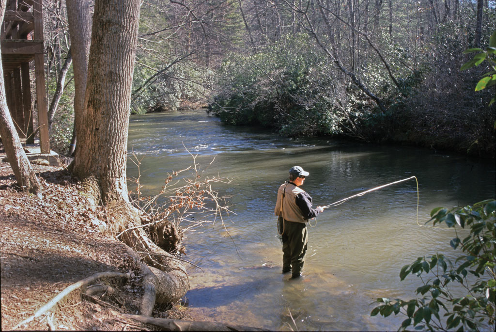 Georgia fishing vacations game fish for Fly fishing north georgia