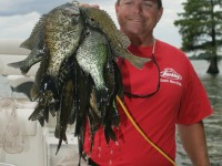 Guide Kevin Davis hoists a stringer of big Lake Moultrie shellcrackers. Photo by Terry Madewell.