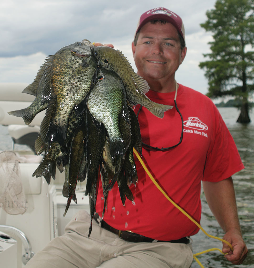 Best Bets for South Carolina Bream Fishing