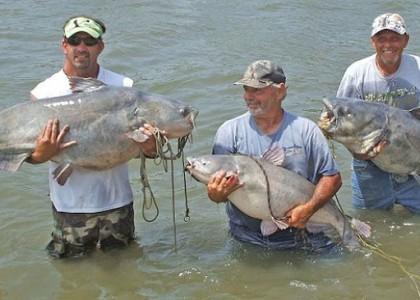 South Dakota Fish  Game on Potential South Dakota Record Blue Catfish
