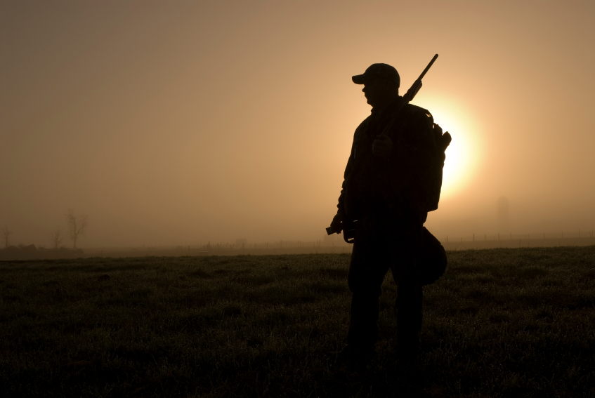 2012 Hunting Season: Why This Year Will Be Better Than Last