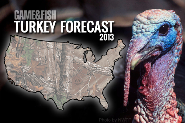 Game & Fish brings you a state-by-state rundown of all the great turkey hunting in the U.S.