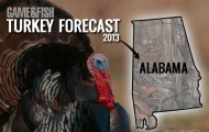 Alabama-Turkey-Hunting-2013-Sidebar