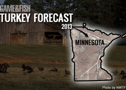 G f forecast minnesota turkey hunting in 2013 for Minnesota game and fish