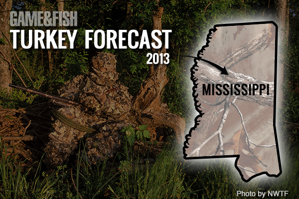 G f forecast mississippi turkey hunting in 2013 game fish for Mississippi fish and game