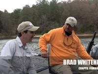 WhiteheadCrappie