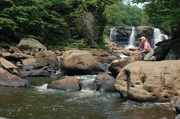 Linda Linger of Davis tests a plunge pool in the Blackwater Canyon. The area offers superb scenery and good trout fishing in the summer heat. ■ Photo by Bruce Ingram.