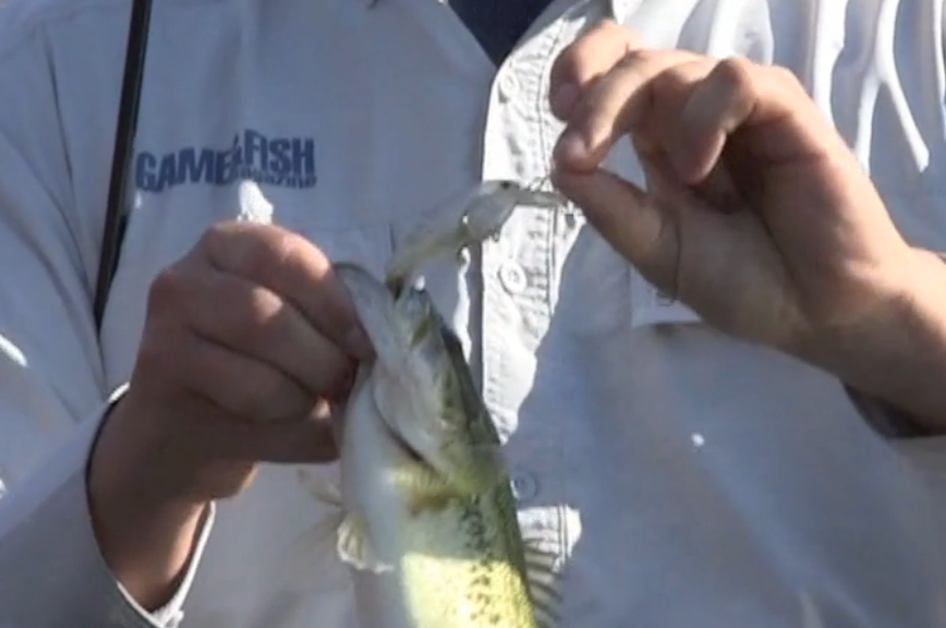 http://brightcove=2191061185001  In the spring, anglers need to match lure size to the forage fish.