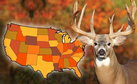 Best-Whitetail-States-for-2014