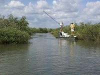 Pole Fishing, Tide Fishing, Coastal Fishing