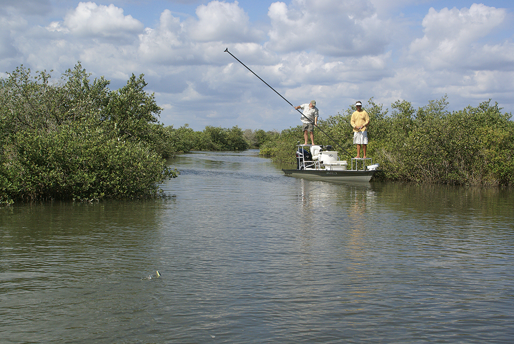 5 Great Spots for Saltwater Fishing in North Florida
