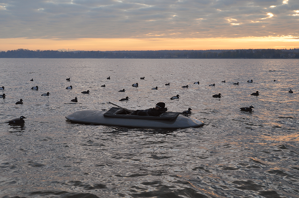 Waterfowl Tactics Try Duck Hunting From A Layout Boat