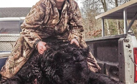 On December 7, 2013, Tyler Napier dropped a 728-pound male black bear that may be Virginia's all-time bruin.