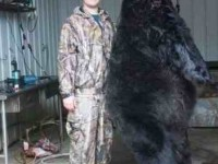 tyler napier bear, record black bear