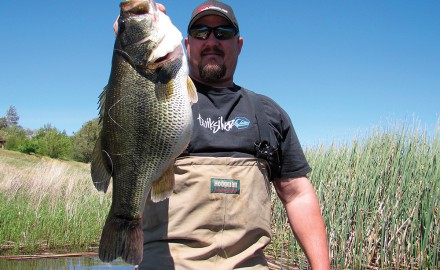 Let's take a look at the options available for February Bass Fishing in California.