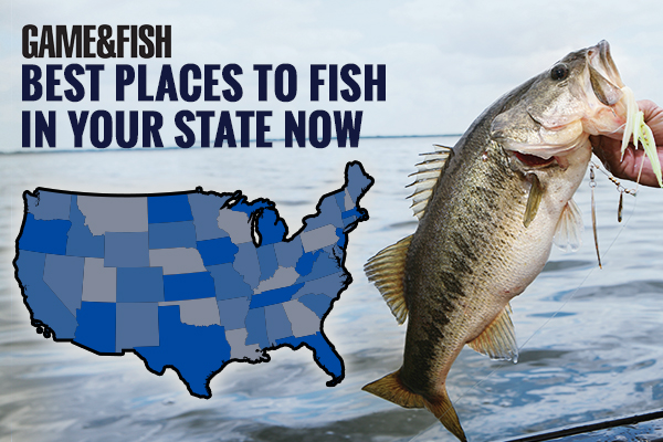 Best Places to Fish in Your State in February
