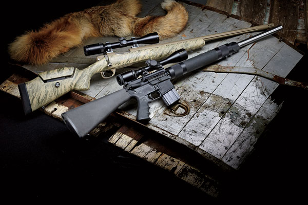 The Best Predator Rifle: Bolt-Action vs. AR