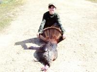 Gobbler, Turkey, Turkey Hunting, Hunting Turkey, Alabama Turkey Hunting