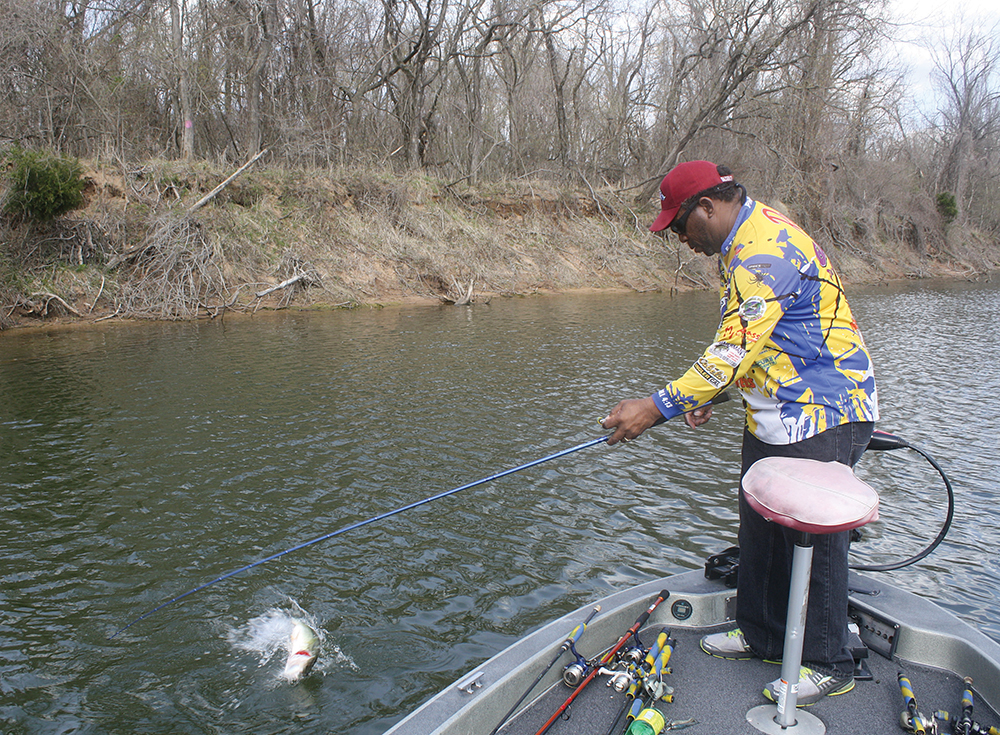 Top Places for Bass Fishing in Arkansas