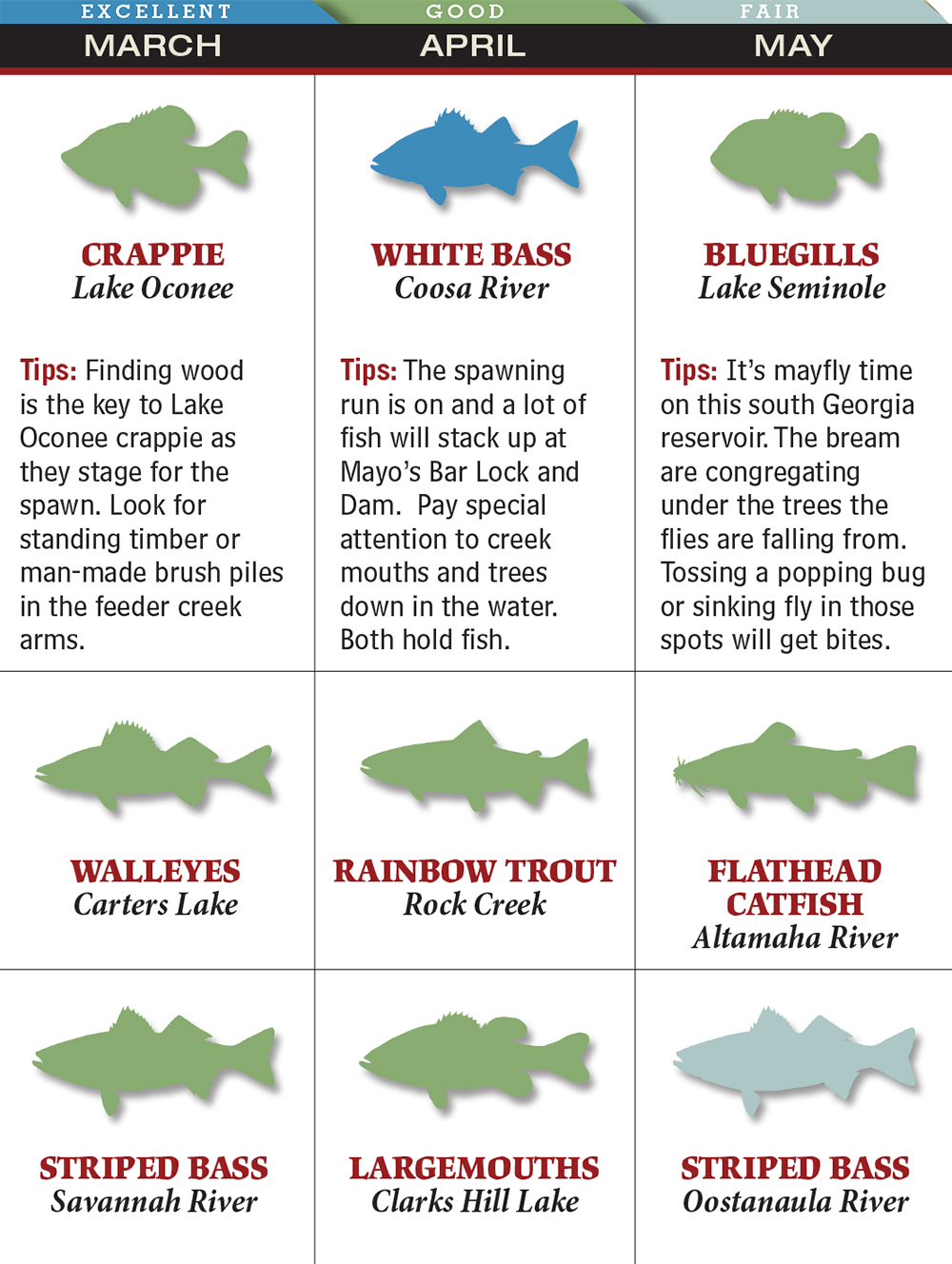 Your Best Spring Fishing in Georgia