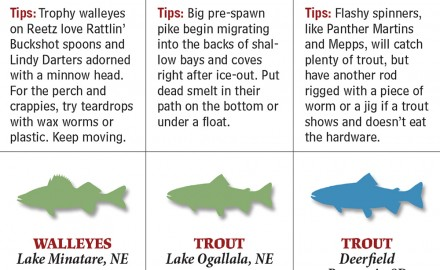 From lakes to rivers to reservoirs and which species to target, these are your best bets for spring fishing in Nebraska.