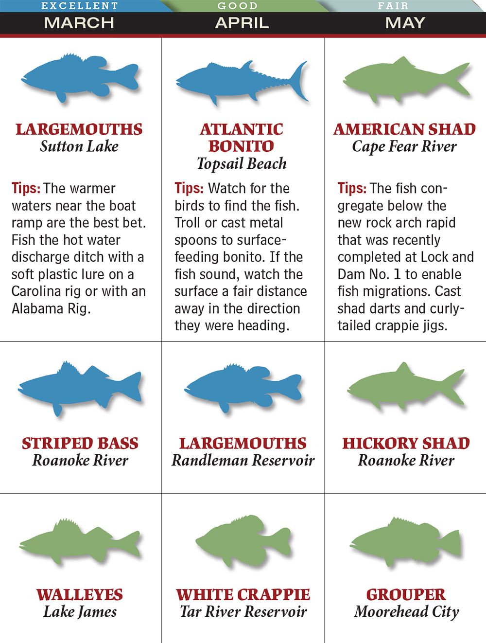 Your Best Spring Fishing in North Carolina