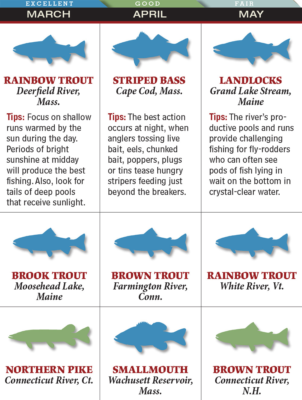 Your best spring fishing in massachusetts game fish for Ct fish and game