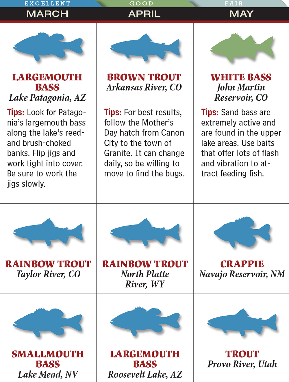 Your Best Spring Fishing in Colorado